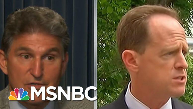 How Manchin & A Broken Senate Squandered U.S. Will For Gun Reform After Sandy Hook | Rachel Maddow 1