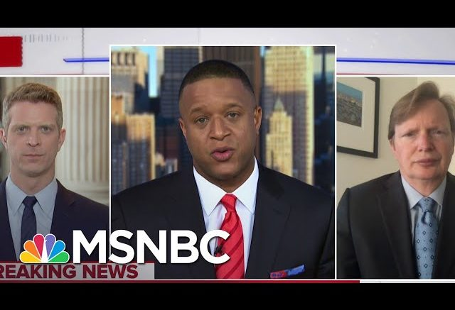 'It Is Time To Get Something Done': Jim Messina On Gun Control   Craig Melvin   MSNBC 1
