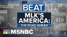 After Beating Trump, Diverse Coalition Eyes Wider Reforms | The Beat With Ari Melber | MSNBC 7
