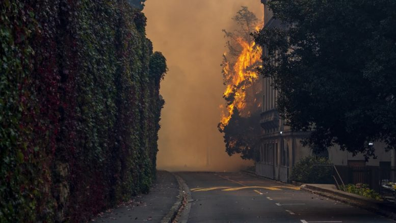Wildfire threatens Cape Town, destroys parts of university 1