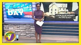 Jamaican Home Seekers Urged to Look to the East | TVJ Business Day - April 19 2021 6