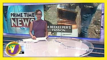 A Sting of Love Beekeeper's Passion in Jamaica | TVJ News - April 19 2021 6