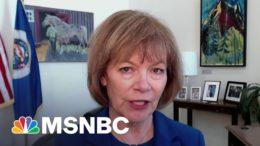 Sen. Tina Smith (D-MN) On Bipartisan Police Reform | Ayman Mohyeldin | MSNBC 4