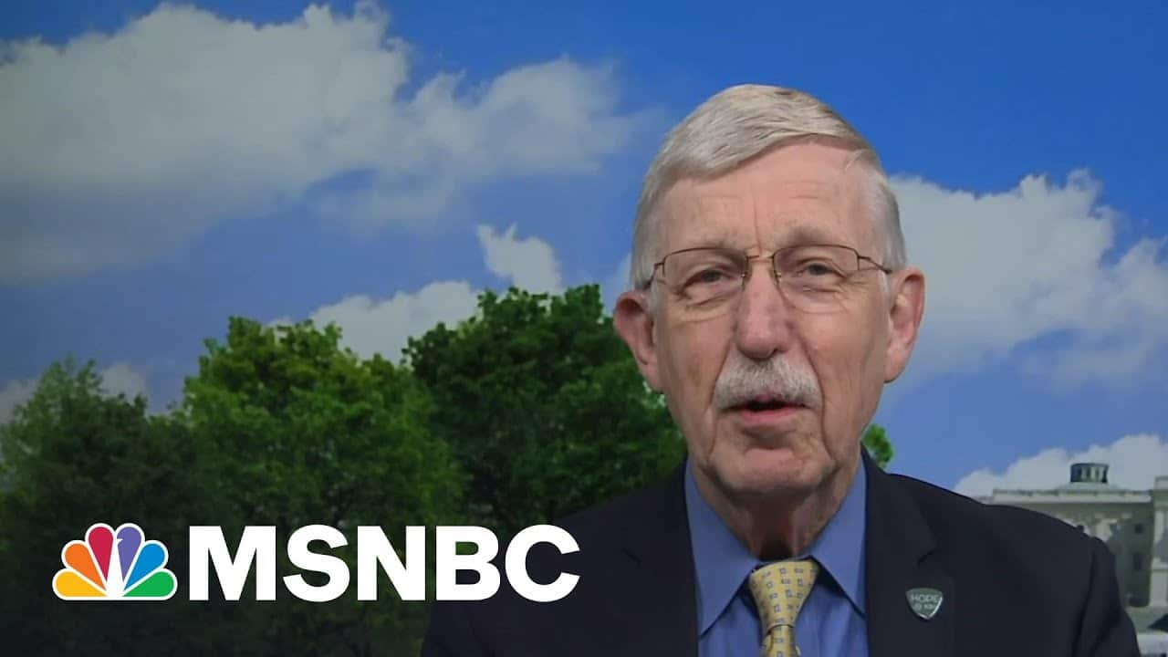 NIH Director: Mandating Covid Vaccine 'Will Make A Lot Of Sense' In Many Cases | MTP Daily | MSNBC 6