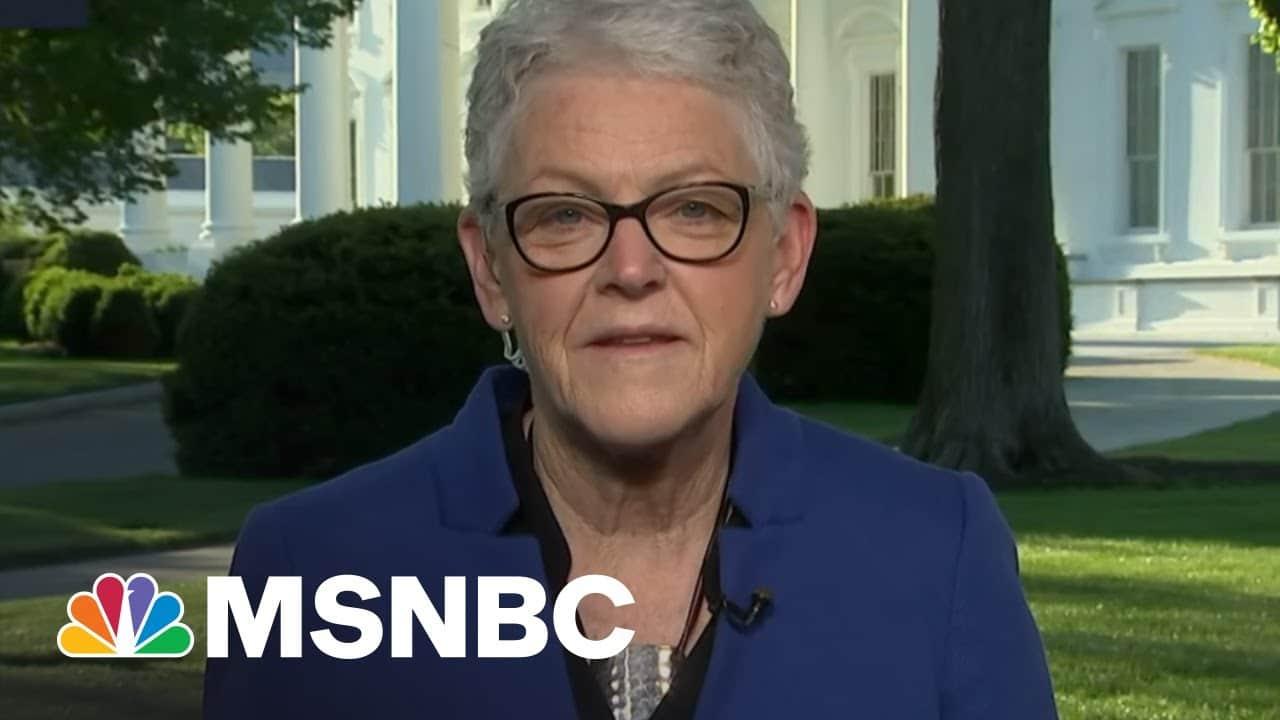 Clean Energy Creates Jobs, Says WH National Climate Adviser | Morning Joe | MSNBC 1