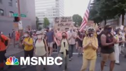 New Florida Anti-protest Laws Protect Drivers Who Hit Protesters | Craig Melvin | MSNBC 7
