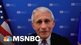 Full Interview: Ayman One-On-One With Dr. Fauci | Ayman Mohyeldin | MSNBC 3