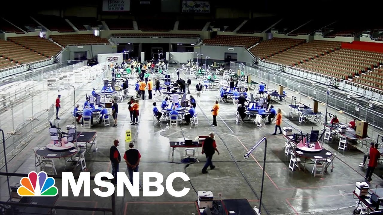 Sketchy Pro-Trump Recount Off To Rocky Start In Arizona | Rachel Maddow | MSNBC 4