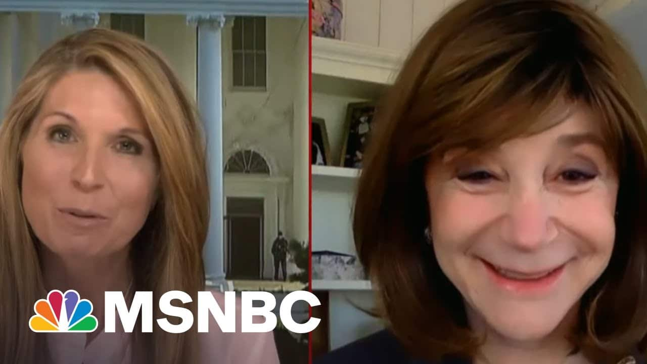 MIT Professor Sherry Turkle Says Re-Entry Into Society Is Harder Than We Think | Deadline | MSNBC 3