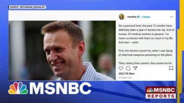 Moscow Court Bans Public Activity By Navalny's Groups   MSNBC 6