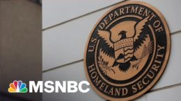 DHS Opens Investigation Into 'Domestic Violent Extremism' Within Its Agency | All In | MSNBC 3