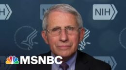Fauci On New CDC Outdoor Mask Guidance: More Of A Reason To 'Get Vaccinated' | All In | MSNBC 1