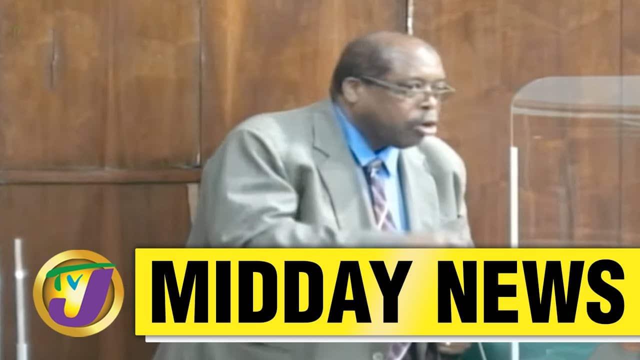 I Am Not A Wimp - says Jamaican Senator L. Brown - April 27 2021 1