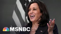 Right Wing Falls For Bogus Story About Kamala Harris | The 11th Hour | MSNBC 4