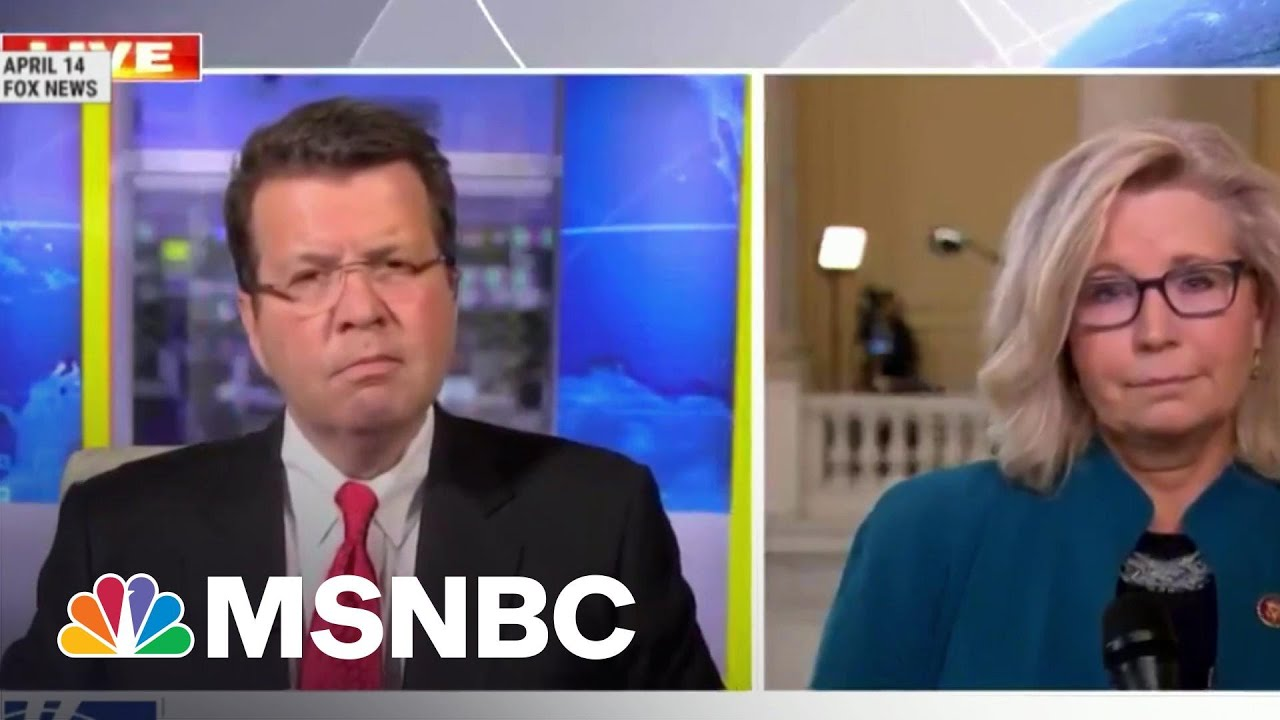 A Study In contrasts: Sen. Lindsey Graham and Rep. Liz Cheney | Morning Joe | MSNBC 1