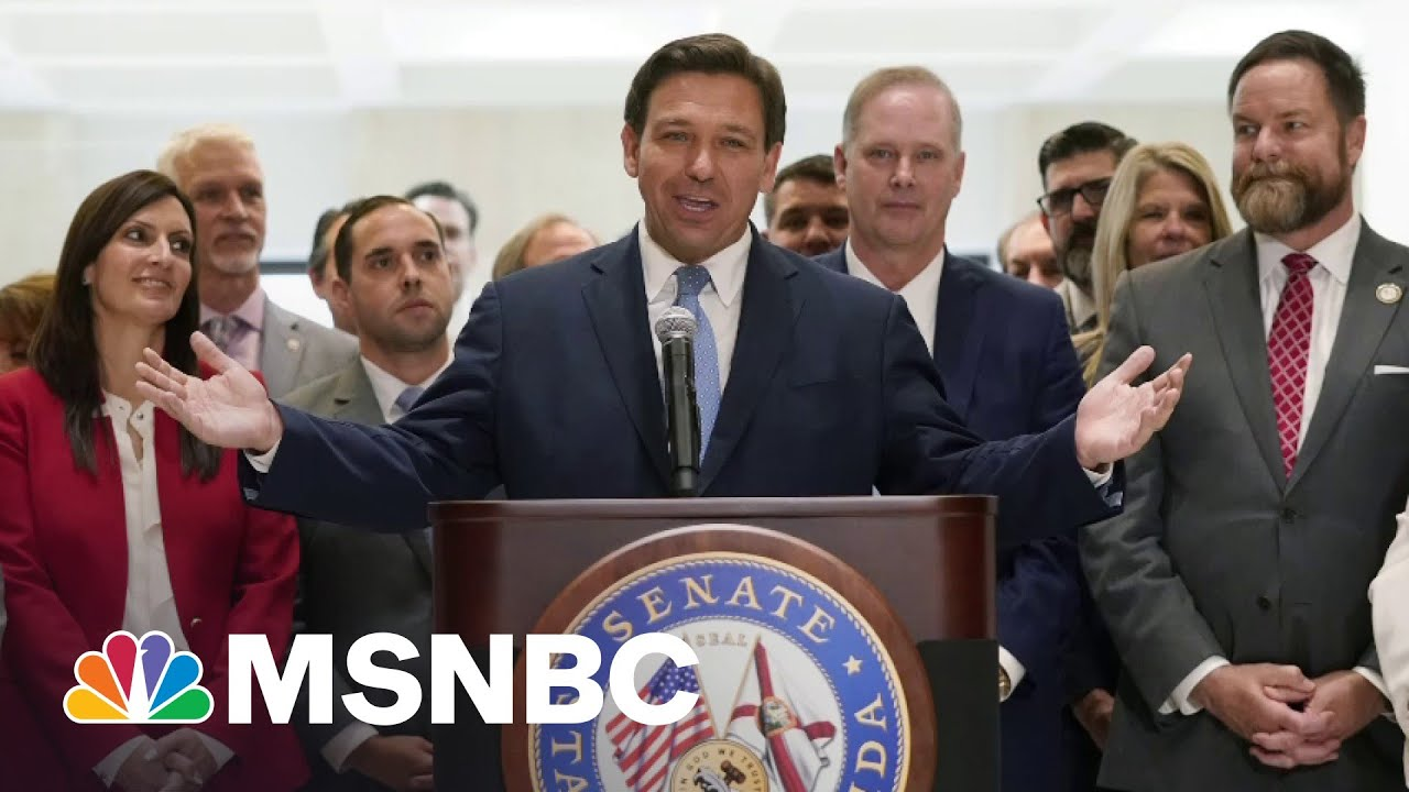 Republican 'Power Grab': Florida Rep On His State's New Voter Restriction Law | All In | MSNBC 1