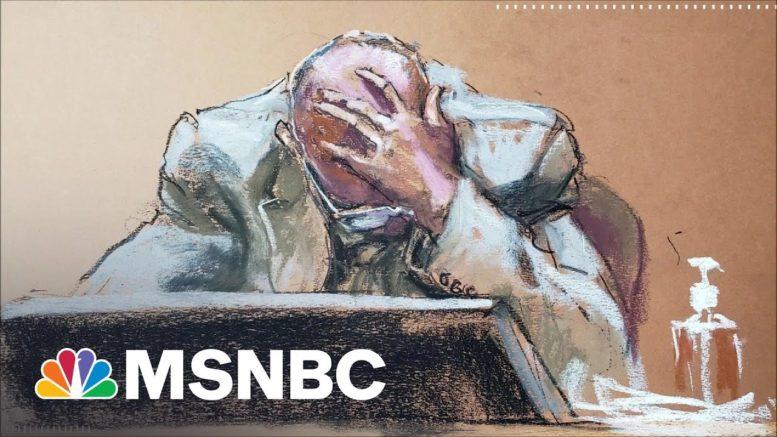 Baratunde Thurston: Derek Chauvin Trial Has Retraumatized Me | The 11th Hour | MSNBC 1