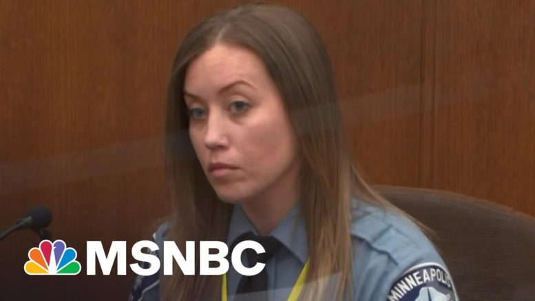 Juror Appeared To Be Sleeping Amid Fact Witness Testimony In Chauvin Trial | Ayman Mohyeldin | MSNBC 1