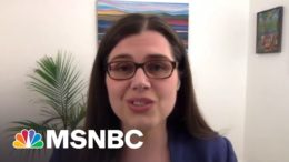 Colorado Sec. Of State: Our Elections Are 'Most Accessible' In The Nation   All In   MSNBC 2