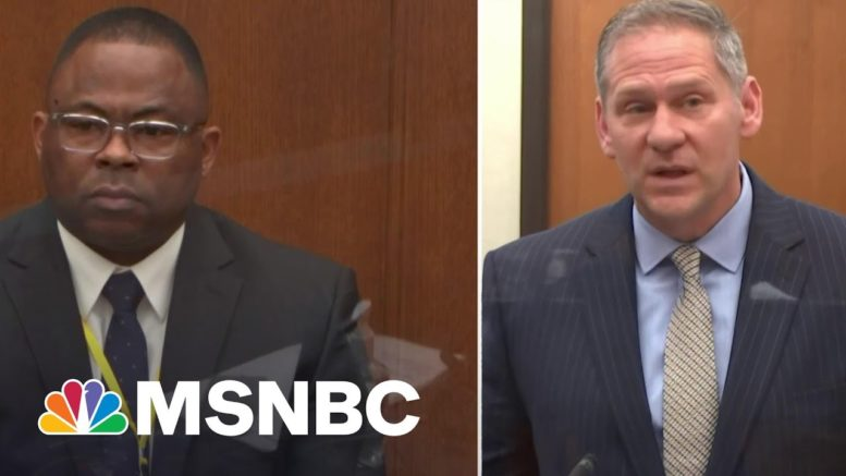 LAPD Officer Testifies He Did Not Perceive Bystanders As A Threat During George Floyd Arrest | MSNBC 1