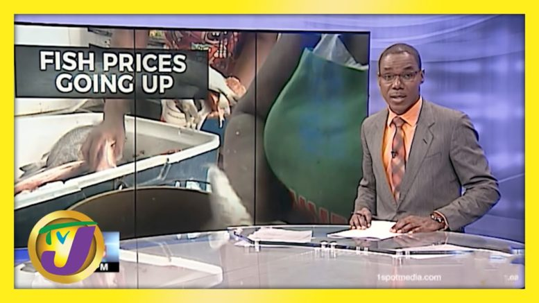Fish Prices up for the Easter in Jamaica - A Holy Hike | TVJ News - April 1