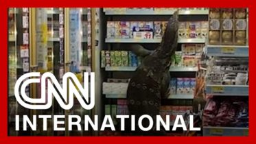 Giant monitor lizard freaks out shoppers in Thailand 6