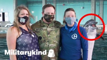 Army dad surprises daughter at dolphin show | Militarykind 6