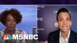 Dr. Vin Gupta: Blood Clots From J&J Vaccine 'Exceptionally Rare' | The ReidOut | MSNBC 2