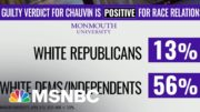 Polls Show Partisan Divide On Impact Of 'Guilty' Verdict In Chauvin Trial | The ReidOut | MSNBC 5