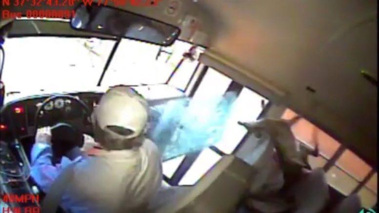 Deer crashes through Virginia school bus windshield 1
