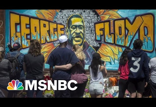 Renée Graham: An 'Entire System' Is On Trial With Derek Chauvin | The Last Word | MSNBC 1