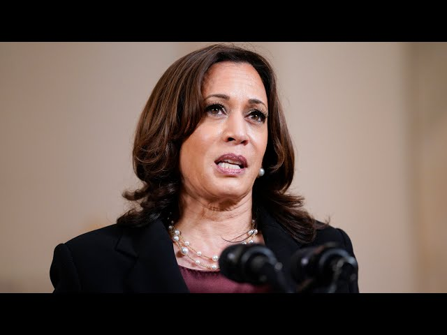 Harris: Black Americans have been treated as 'less than human' throughout U.S. history 5