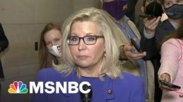 Liz Cheney Swears To Do 'Everything She Can' To Prevent Trump's Return 2