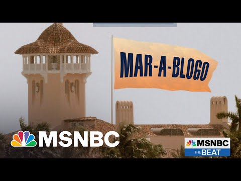 Trump Losing Blog Wars After Losing Election | MSNBC's The Beat 1