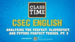 CSEC English - Analysing the Perfect, Pluperfect, and Future Perfect Tenses, Pt 3 - May 3 2021 9