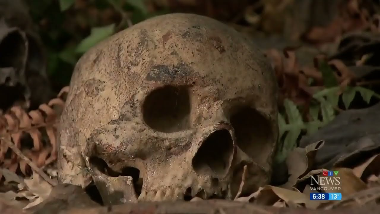 DNA to be used in one of Vancouver's most horrifying cold cases 1