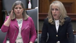 'I will not be spoken to that way': Ont. LTC Minister responds to calls to resign 3