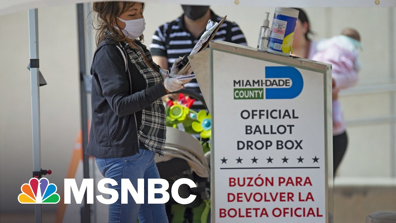 Republicans Fear New Voting Restrictions Could Backfire On Their Own Voters | Rachel Maddow | MSNBC 1