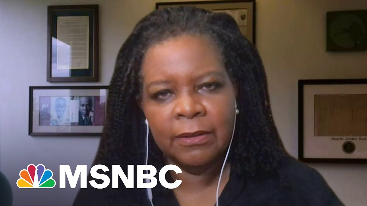 Annette Gordon-Reed: History Teaches Us About Change Over Time | Morning Joe | MSNBC 1