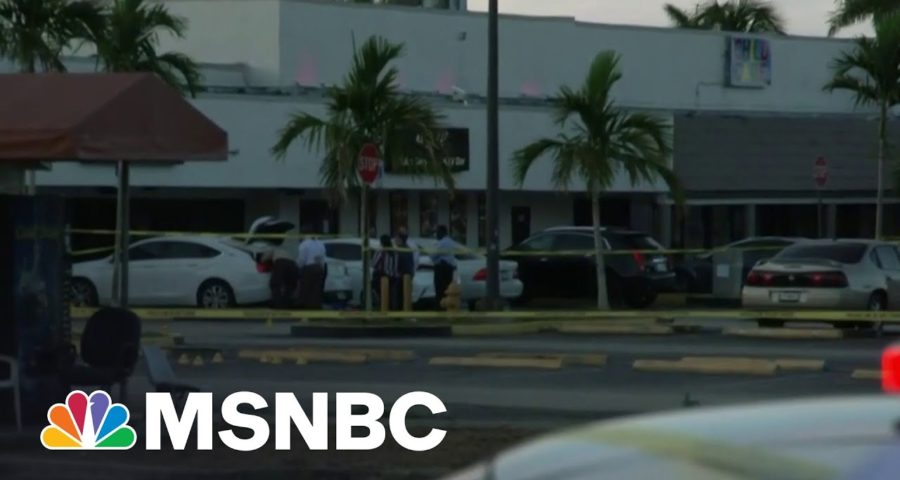 Two Dead, Over 20 Injured in Miami Mass Shooting 7