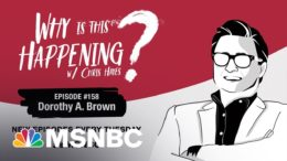 Chris Hayes Podcast With Dorothy A. Brown | Why Is This Happening? - Ep 158 | MSNBC 9