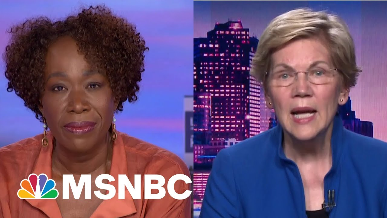 Sen. Warren Says Facebook Did What The Federal Government Failed To Do: Ban Trump | The ReidOut 7