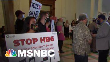 Brett Hurt On Texas Voting Restriction: 'It's Fundamentally Anti-Democratic' | MSNBC 6