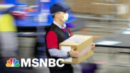 'Bring In The Pandas': Election 'Audit' Continues To Bamboo-zle Onlookers | All In | MSNBC 9