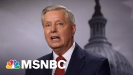 Lindsey Graham Claims Republican Party 'Can't Grow' Without Trump | MSNBC 8
