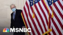 How Mitch McConnell Is Keeping His 'Grim Reaper' Brand Alive In 2021 | All In | MSNBC 8