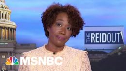 Fox-Mania: Capitol Insurrectionists And Their 'Ridiculous Excuses' | The ReidOut | MSNBC 2