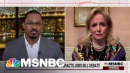 "Rep. Debbie Dingell: People ""Are Desperate To Get Back To Work"" 
