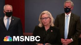 The GOP Is Trying To Erase Liz Cheney. She Won't Go Away So Easily. | Craig Melvin | MSNBC 5