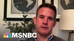 Republican Rep. Kinzinger Slams Party Over Liz Cheney Ouster: 'This Is Lies Versus Truth' | MSNBC 4